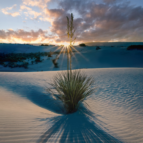 White Sands 12.1 Sunset Godray SQ-Final Clouds.jpg