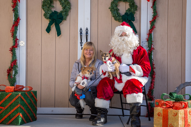 Pet Pictures With Santa-56.jpg