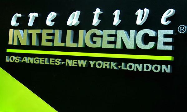 Creative Intellingence