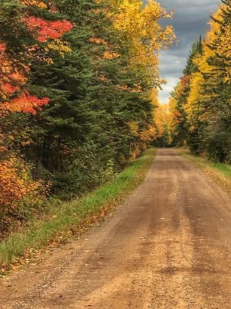 Fall roads