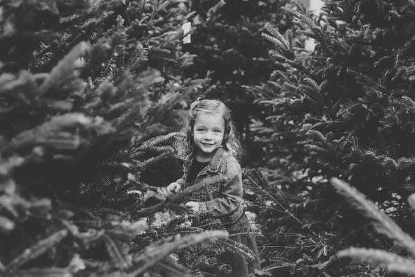 Rieder Christmas