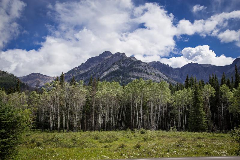 Banff, Alberta Canada 2019-2276.jpg