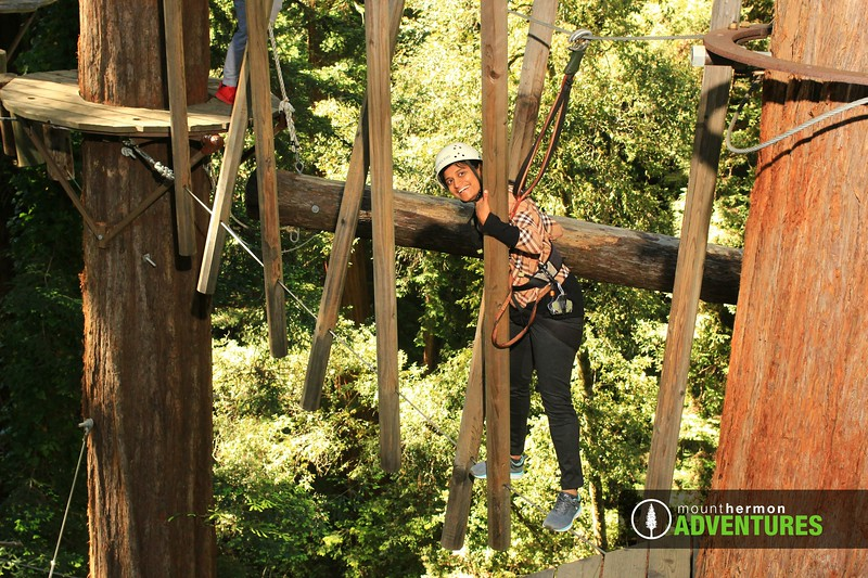 sequoiaportrait_1559085628079.jpg