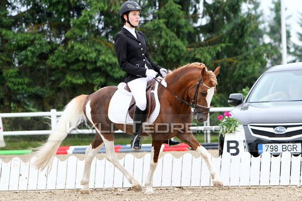 EMV 2013, ponid, I osavõistlus