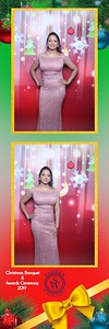 Western Scientific Christmas Party 2019 (Photobooth)
