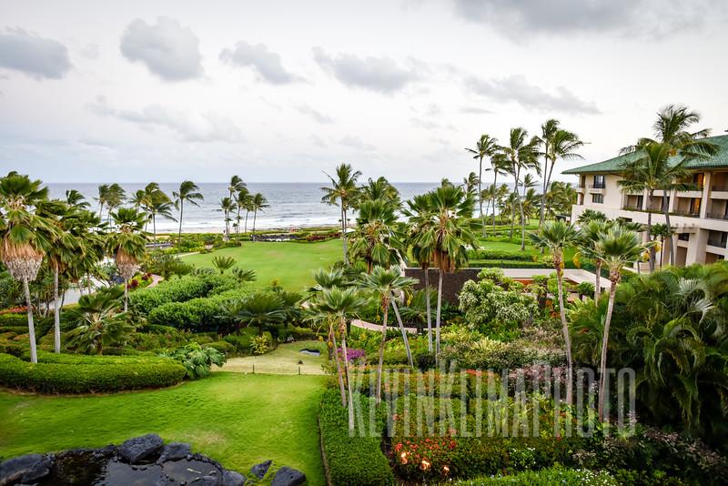 Kauai2017-001.jpg