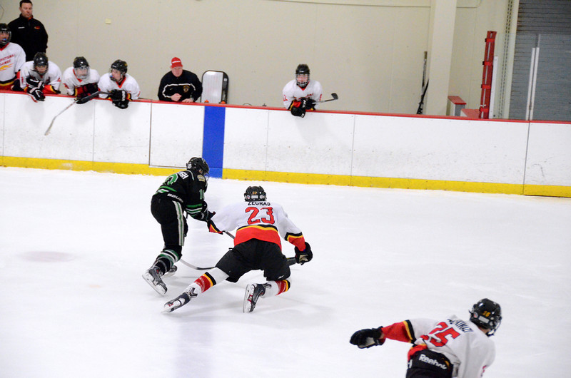 140111 Flames Hockey-039.JPG