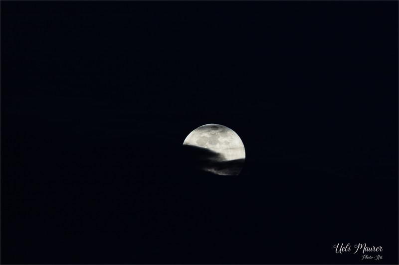 2019-02-19 Mond - 0U5A7396.jpg