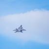 F22_Raptor-060