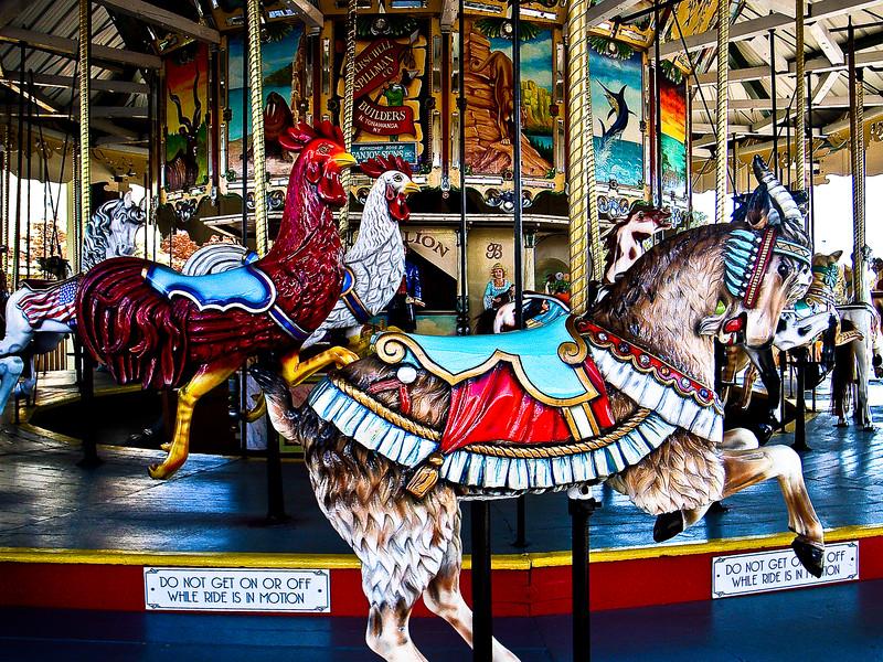 Fast_Chickens.jpg