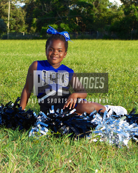 MIGHTY MITE CHEER
