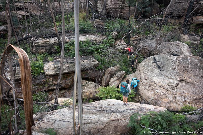 Scrubby crossing of a side creek