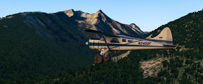 DHC2_Beaver - 2021-08-09 17.00.02.jpg