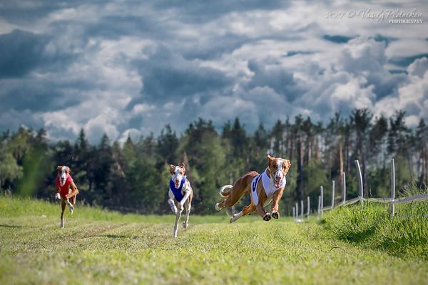 2017/06/11 Racing (Milet), part 2