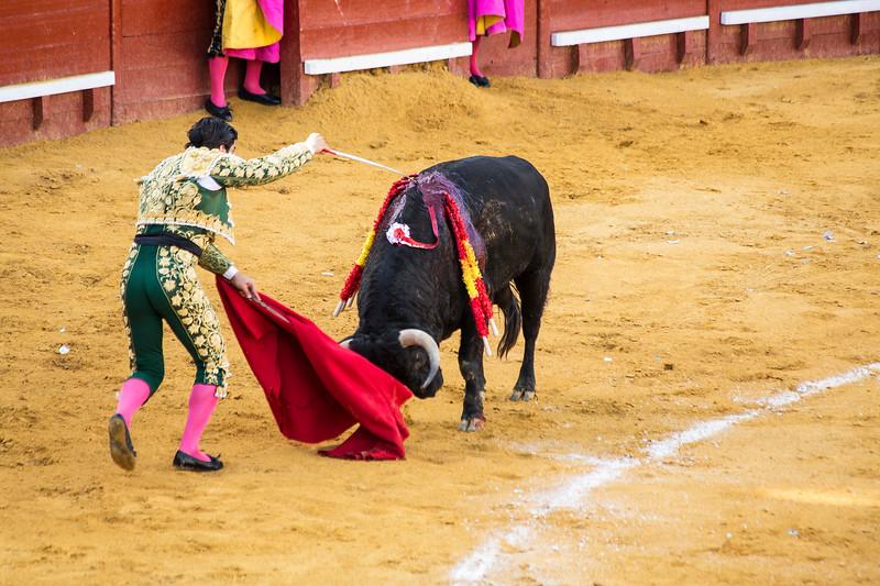Bullfight10.jpg