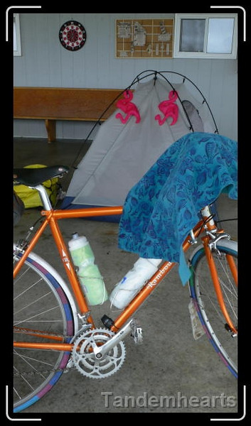 It was so windy at the campground at Church Point that the owners suggested we set up our tent inside the wind break.