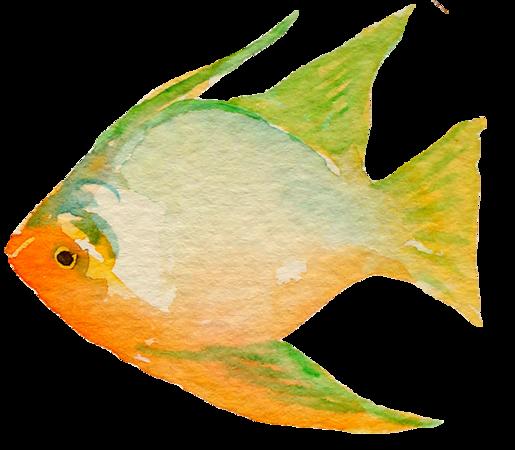 fish10.png