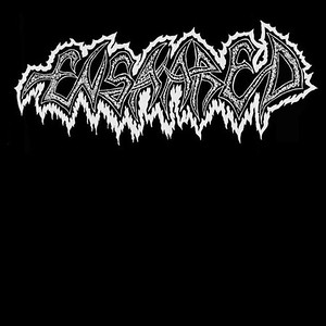 ENSNARED (SWE)