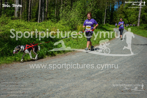 Canicross - All Course Pictures