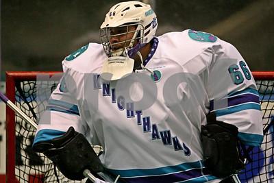 12/28/2013 - Minnesota Swarm vs. Rochester Knighthawks - Blue Cross Arena, Rochester, NY