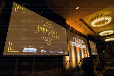 2017 Director of the Year