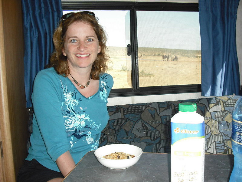 We had breakfast in our camper by a watering hole.  As we ate, about 100 elephant strolled in for a bath.