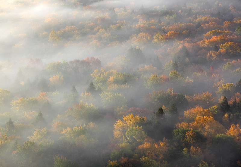 Drifting Amidst Fall - Big Carp River Valley (Porcupine Mountains State Park - Upper Michigan)