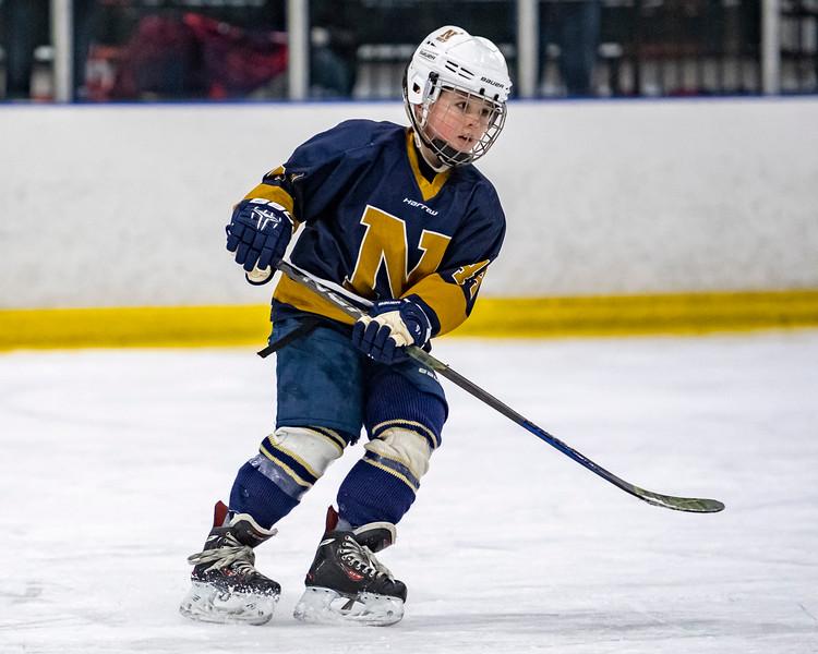 2019-02-03-Ryan-Naughton-Hockey-33.jpg