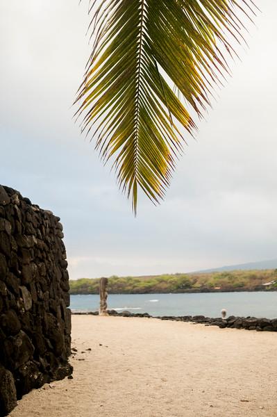 Hawaii_Spelman-50.JPG