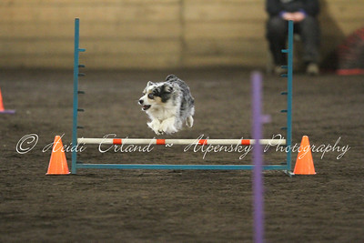 Jumpers Open - 03/20/14
