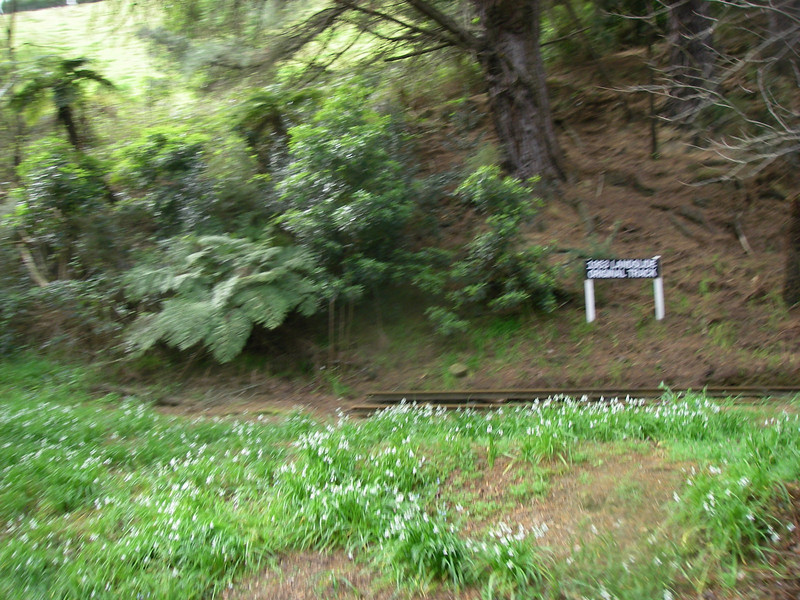 Puffing Billy and Phillip Island 048.JPG