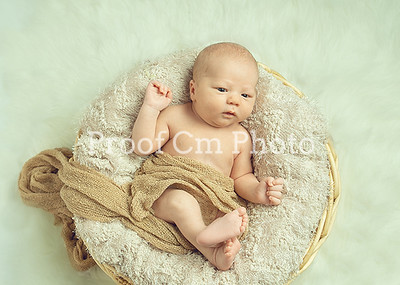 Amanda Order 10 18 Winnipeg Newborn Photography