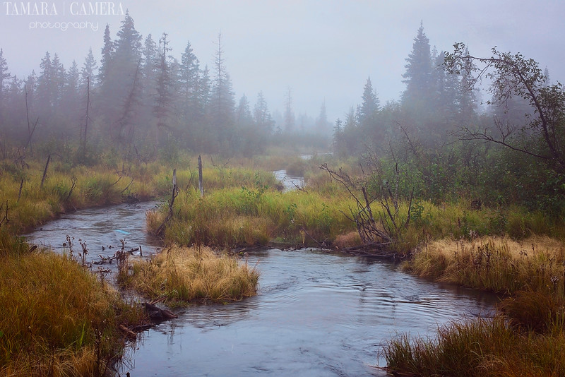 Eagle River7-6.jpg