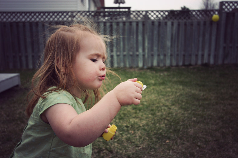 sydney-bubbles_2432480123_o.jpg