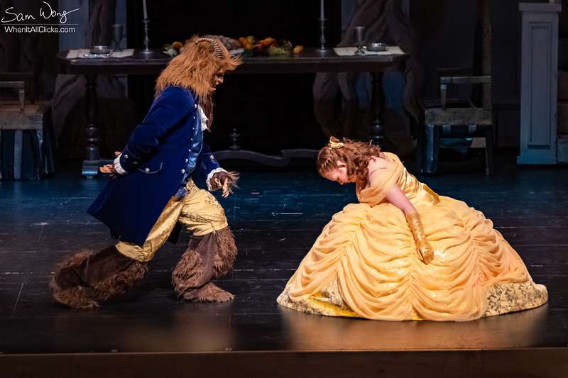 Beauty and the Beast 2018-11-08-65382.jpg