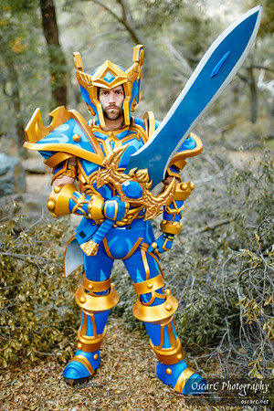 Battlegear Heroism (Arthos Cosplay And Props ) from World Of Warcraft