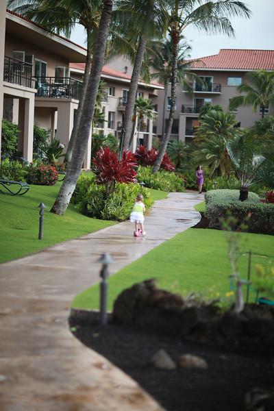 Kauai_D4_AM 021.jpg