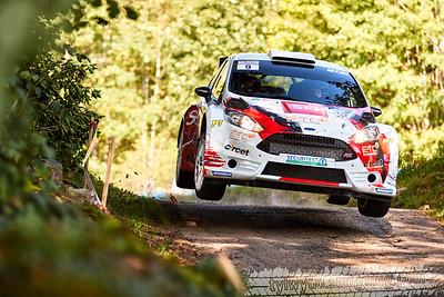 Rallye Vosgien 2017