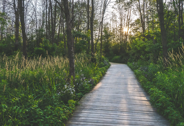Wisconsin Nature Preserves