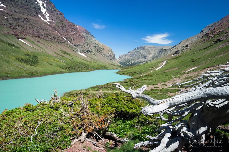 150611_CrackerLake_glacier_national_park_5715.jpg