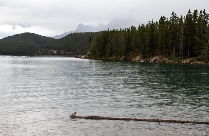 misty, Lake Minnewanka