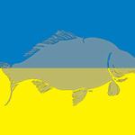 WCC-flag-Ukraine-240x160.jpg