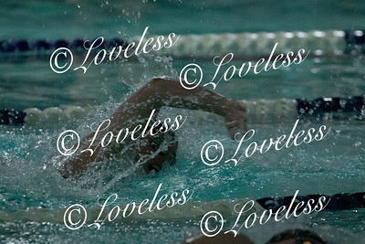 Swim Meet 1/11/20