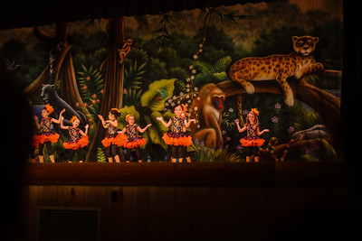 Animal Kingdom Dance Program