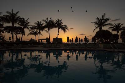 2017 Palm Beach