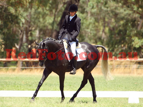 2014 02 01 Acres Dressage Series Grassed Arenas 12-00 till 13-00