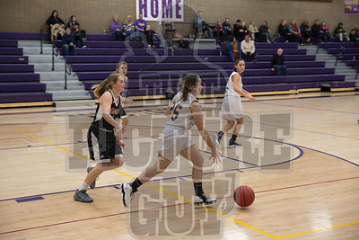 Girls basketball vs Galt 2017