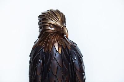 Aguila Fuente de Ranas 2019