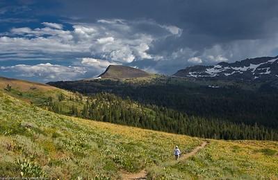 meiss meadow & trail