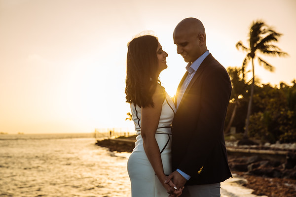 Danish & Sonya Proposal